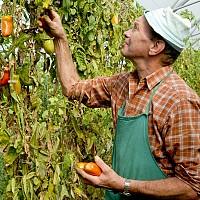Биопроизводителите могат да се сдружават и без да са преработватели