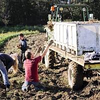 Момчил Неков: Европа трябва да стимулира използването и събирането на горски плодове, гъби и билки в борба с безработицата и обезлюдяването