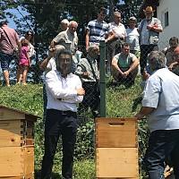 В подкрепа на пчеларите Момчил Неков внесе законодателни поправки в новата ОСП да има финансова подкрепа за опрашване