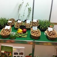 Евродепутатът Момчил Неков призова да има информация за произход на сорта в етикетирането на биопродуктите